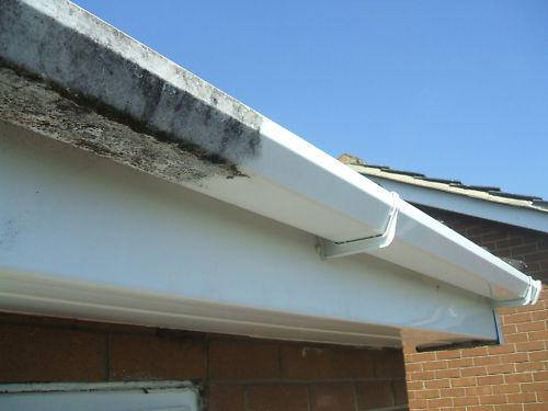 Gutter and Fascia Cleaning Kingston upon Thames and Wimbledon